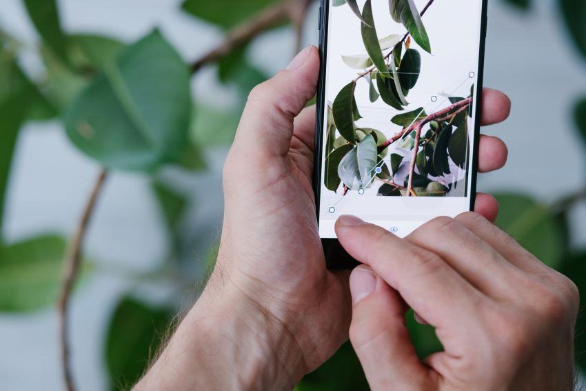 Las 3 mejores apps para editar fotos